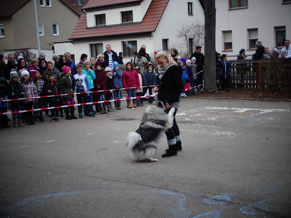 Schulbesuch Geislingen