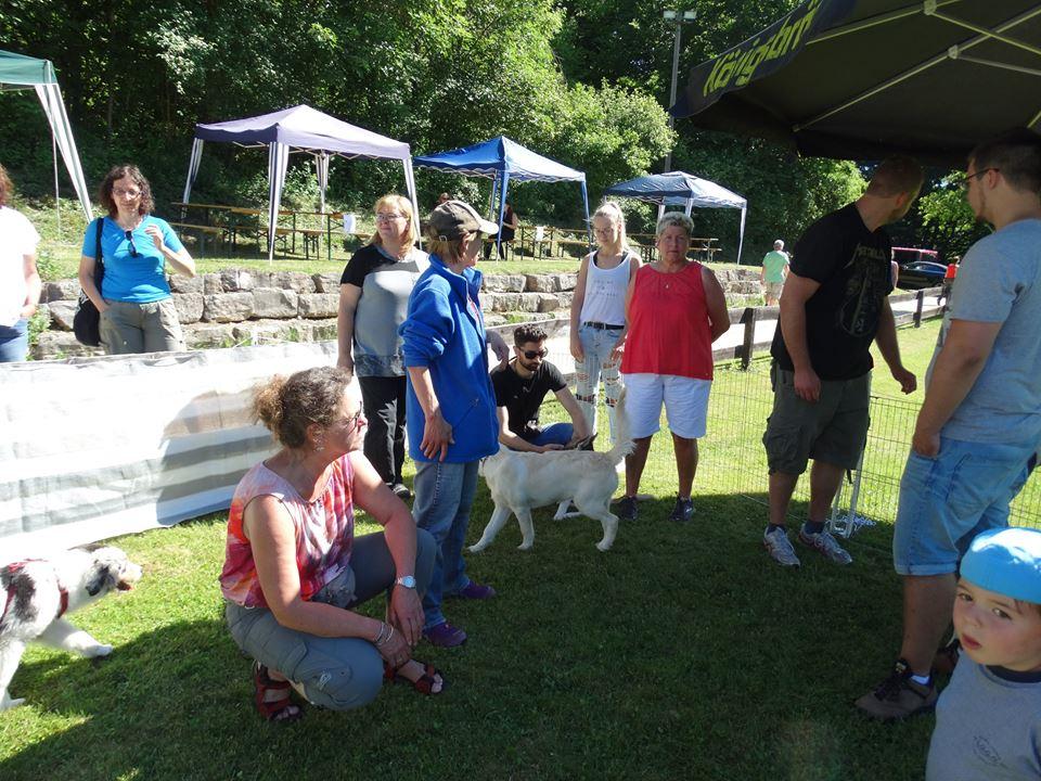 Sommerfest 2017-2