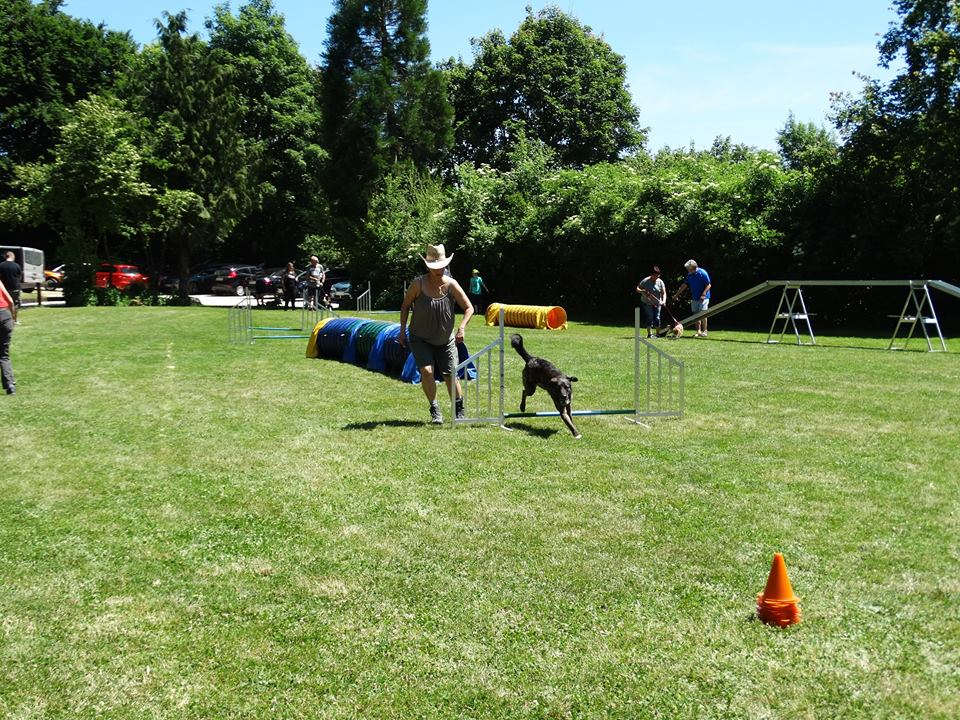 Sommerfest 2017-25