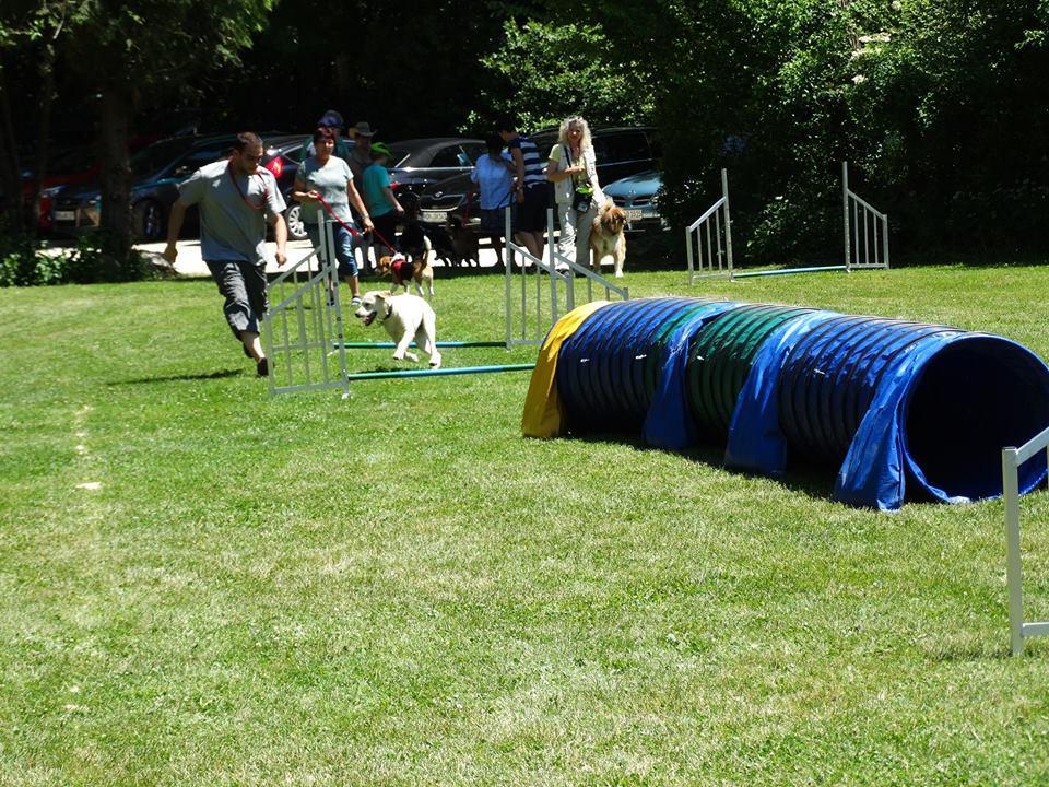 Sommerfest 2017-29