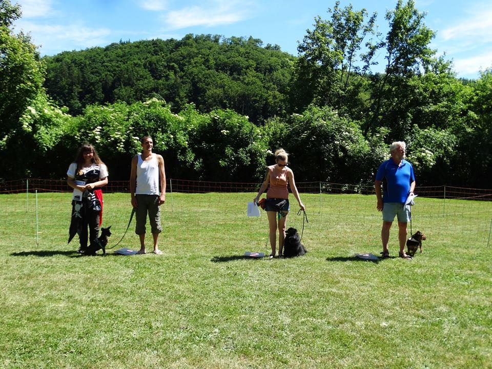 Sommerfest-2017-Hunderennen-S